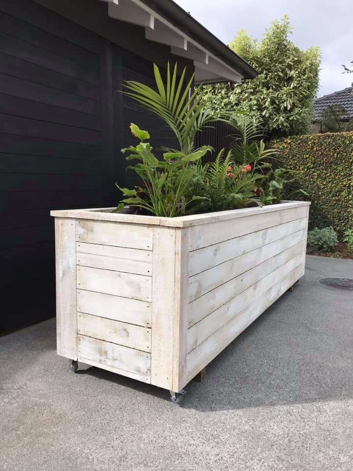 plant box 4